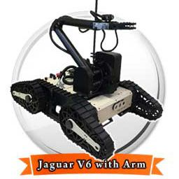 jaguar-6-arm-256-256-01
