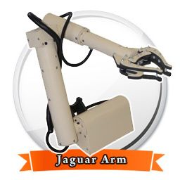 jaguar-arm-256-256-01